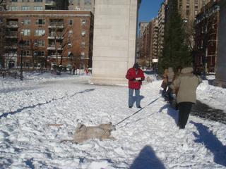 20101231_8y