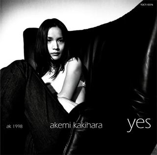 Ak_yes500