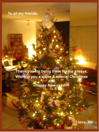 ak_christmas__new_year_card_2004