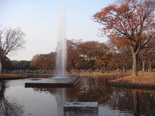 20101130_3y