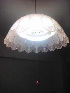 20101202_5t